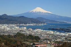 47_shizuoka